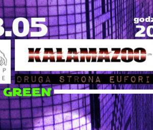zdjęcia z koncertów Kalamazoo