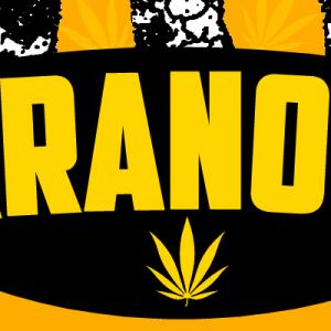Paranoise